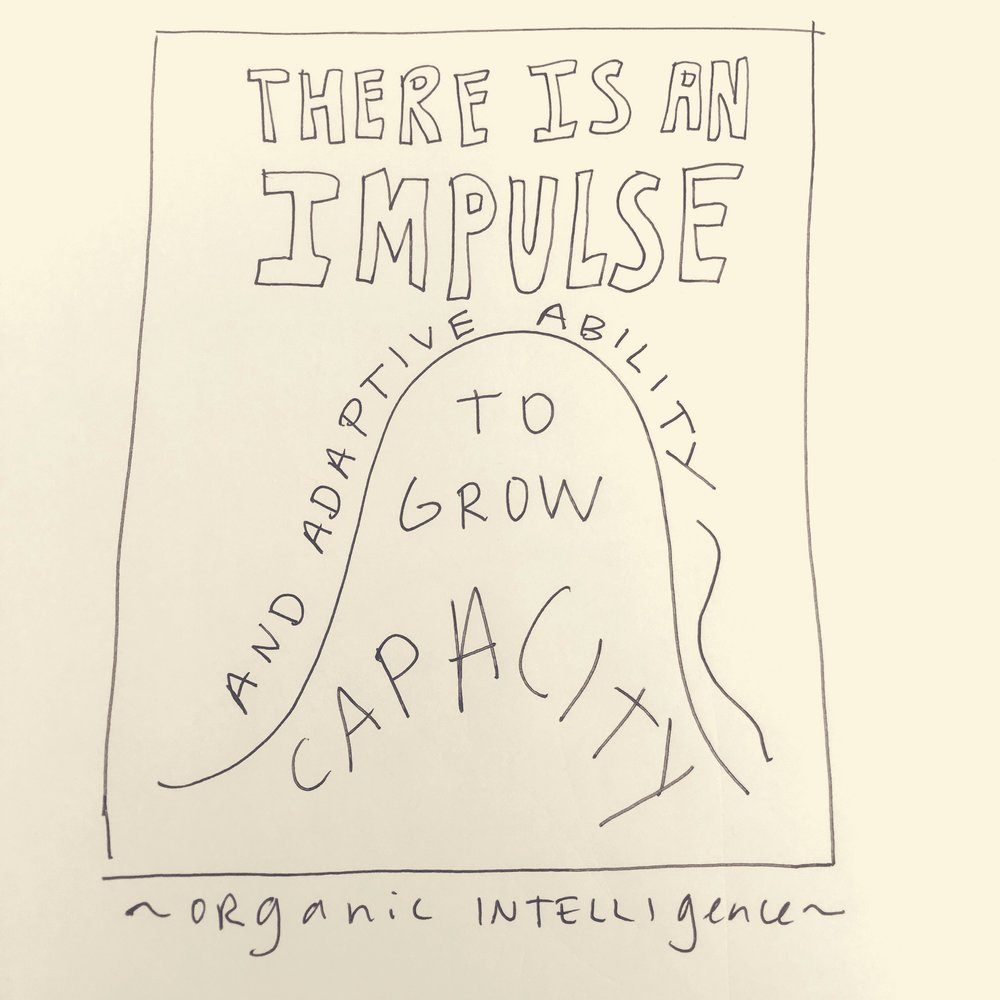 Organic Intelligence quotes by Steve Hoskinson.  Images by Tiffany Sankary