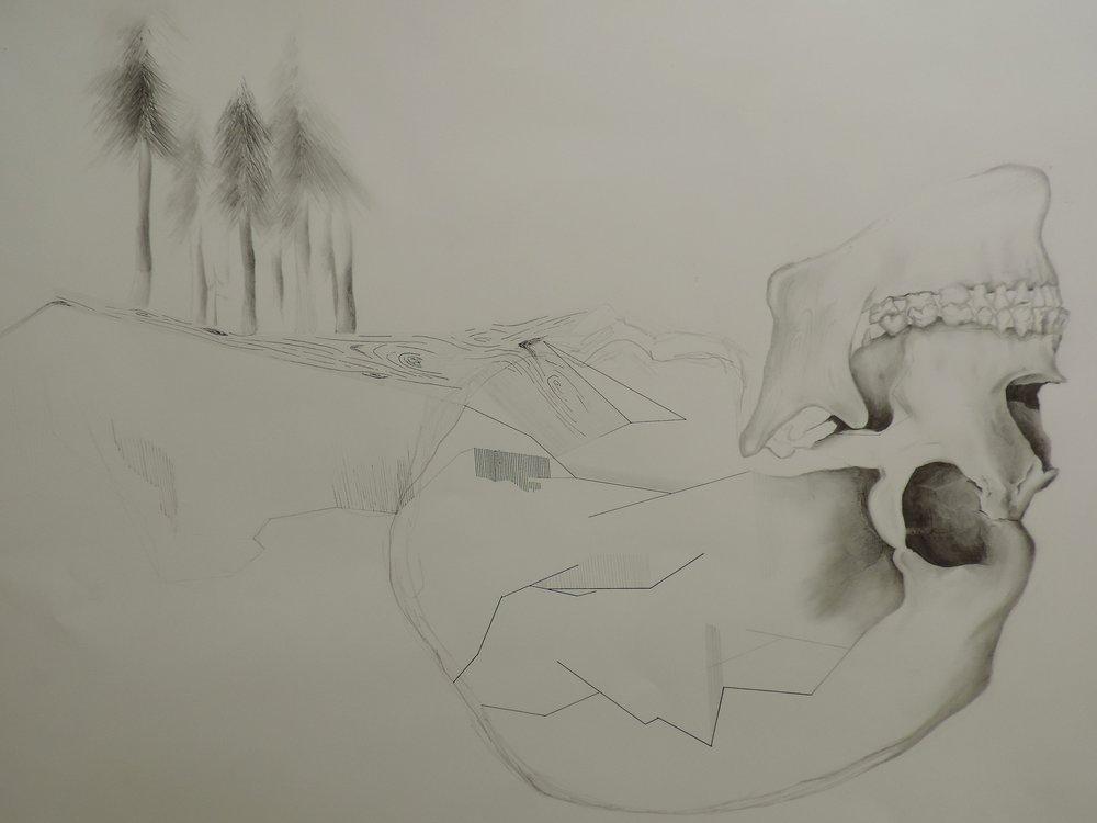 "Grand Tetons graphite + ink // 2014 // 23"" x 29"""