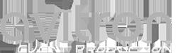 logo-avitron.png