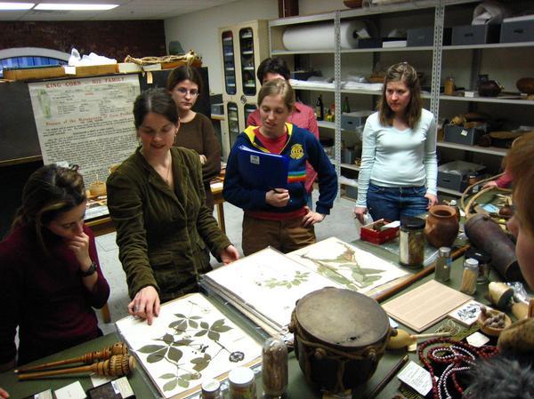 Museum herbaria research 09.jpg