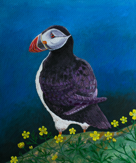 """ DREAMING   PUFFIN "" A4  - Acryl on paper, i glass m. sort træramme    SOLGT"