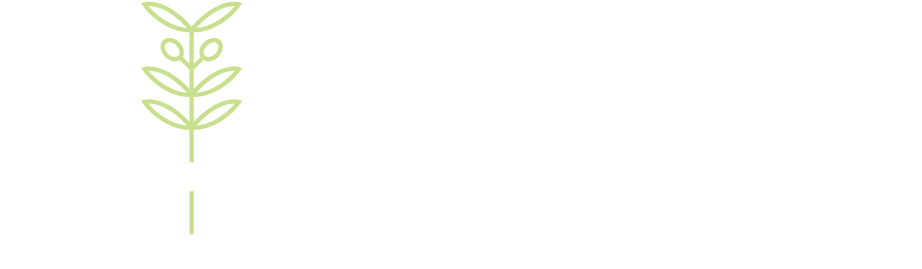 Divorce Better