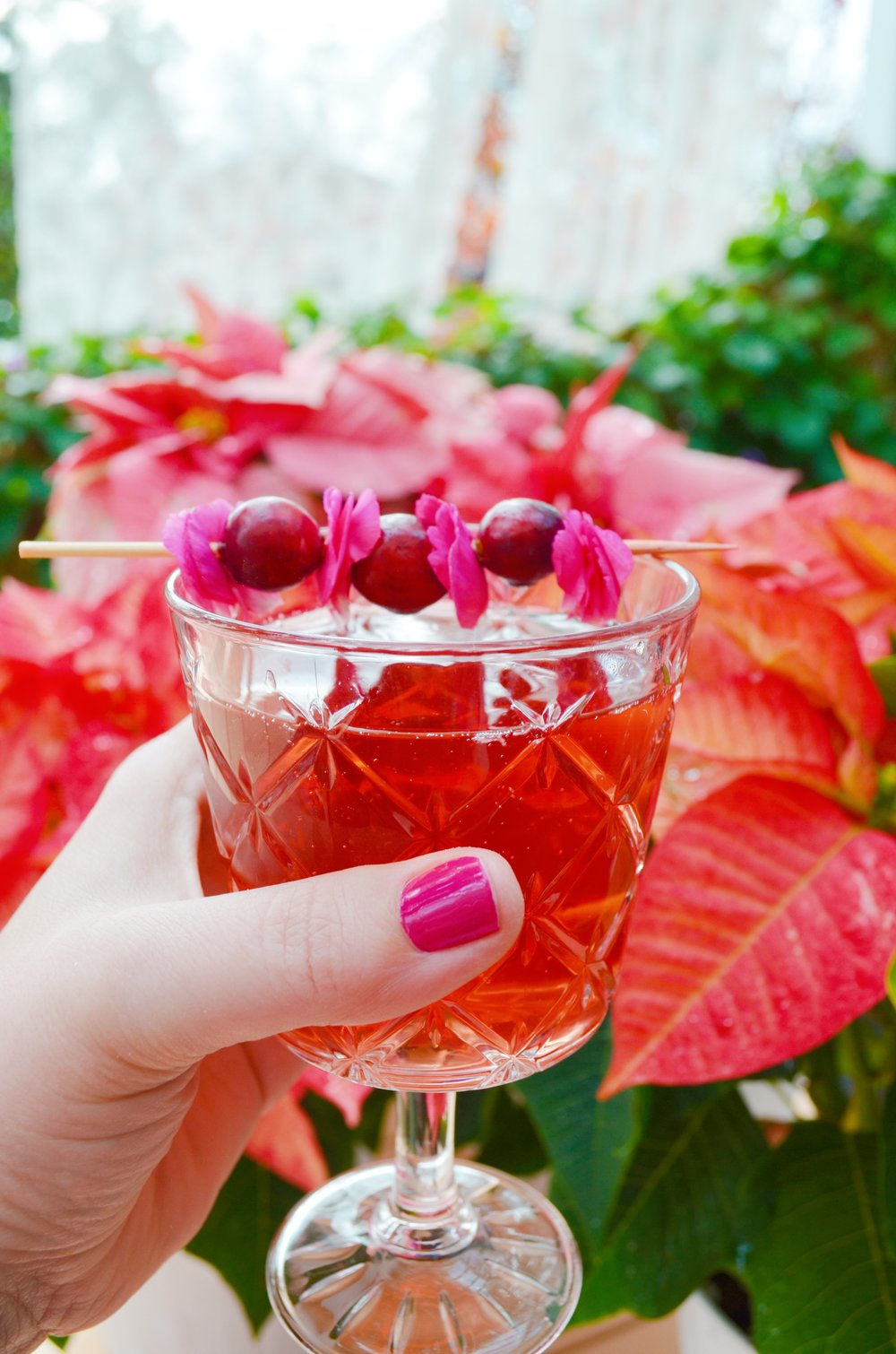 Pink Poinsettia Cocktail Drinking With Chickens