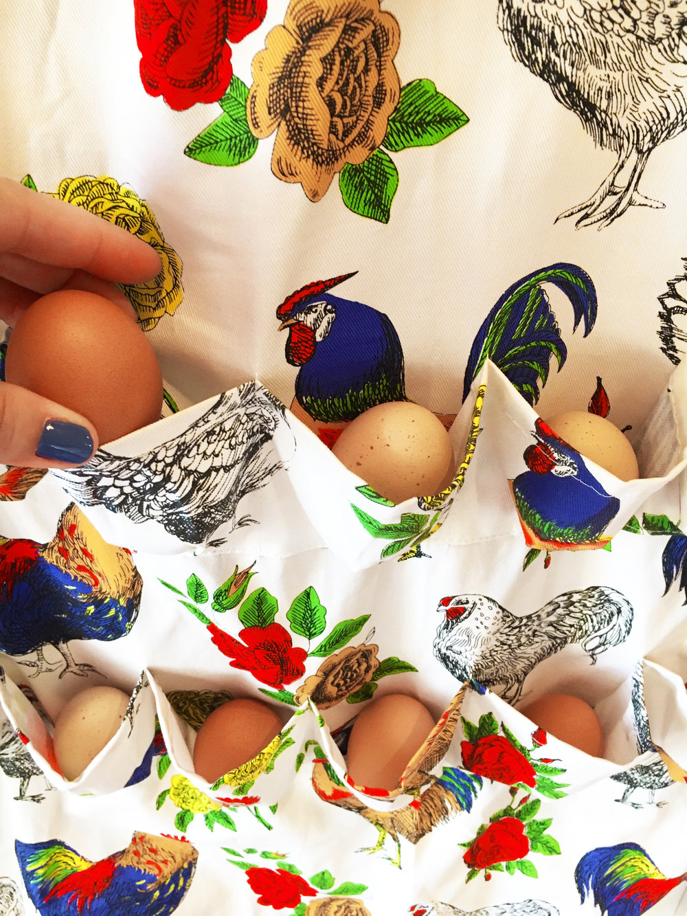 FluffyLayers.com Egg Collecting Apron via DrinkingwithChickens.com