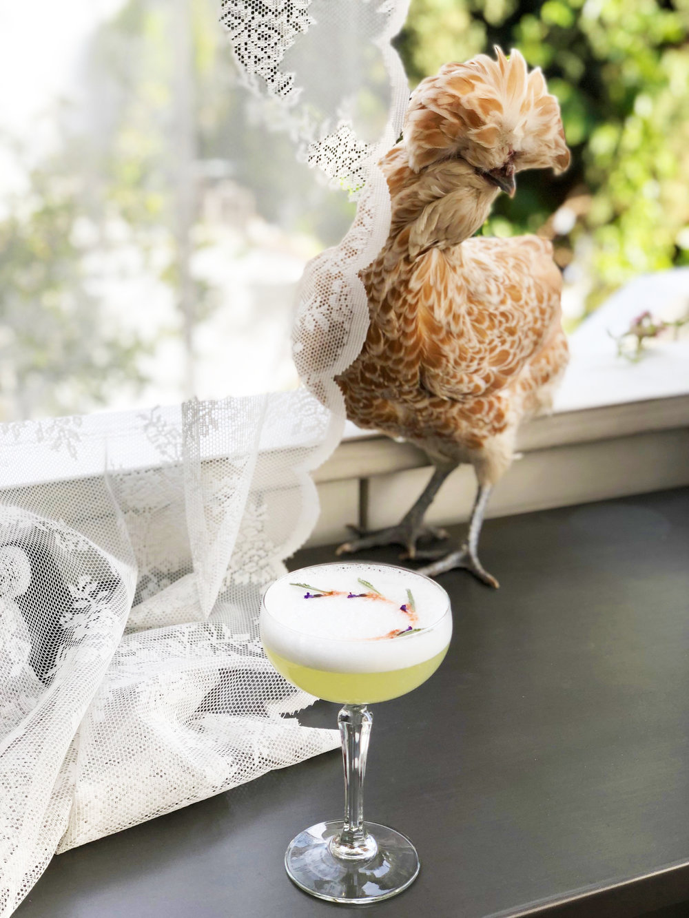 Lavender Pisco Sour | drinkingwithchickens.com