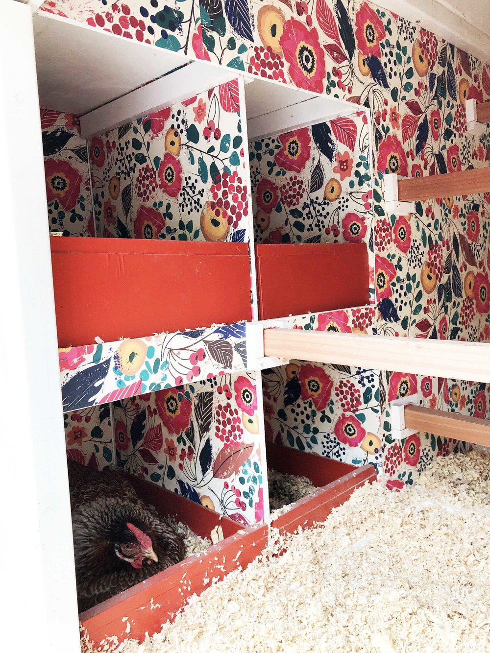 The nesting boxes are just inside the door of the coop and pull out for easy cleaning. Find the wallpaper  here .