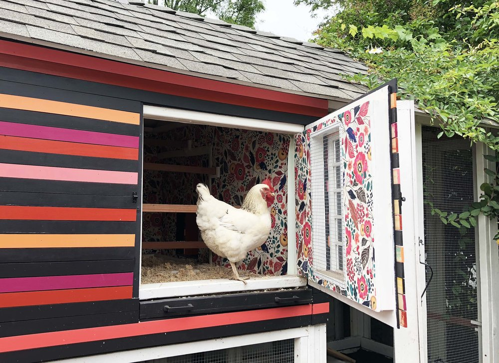 The henhouse part of the coop features a cute little acrylic window that can be opened and closed for added ventilation (the opening is lined with hardware cloth for security), and the front wall opens for easy cleaning. There are also slide out trays for deep cleaning the roost area bedding.