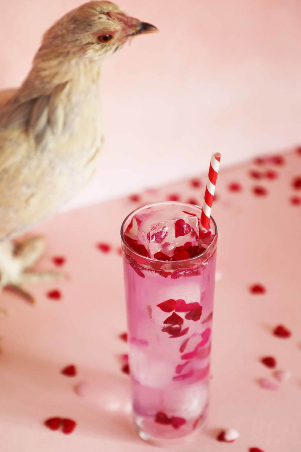 Hearts + Butterflies Gin + Tonic made with color-changing EmpressGin 1908, heart-shaped rose petal confetti, rosewater, lemon, and tonic | drinkingwithchickens.com