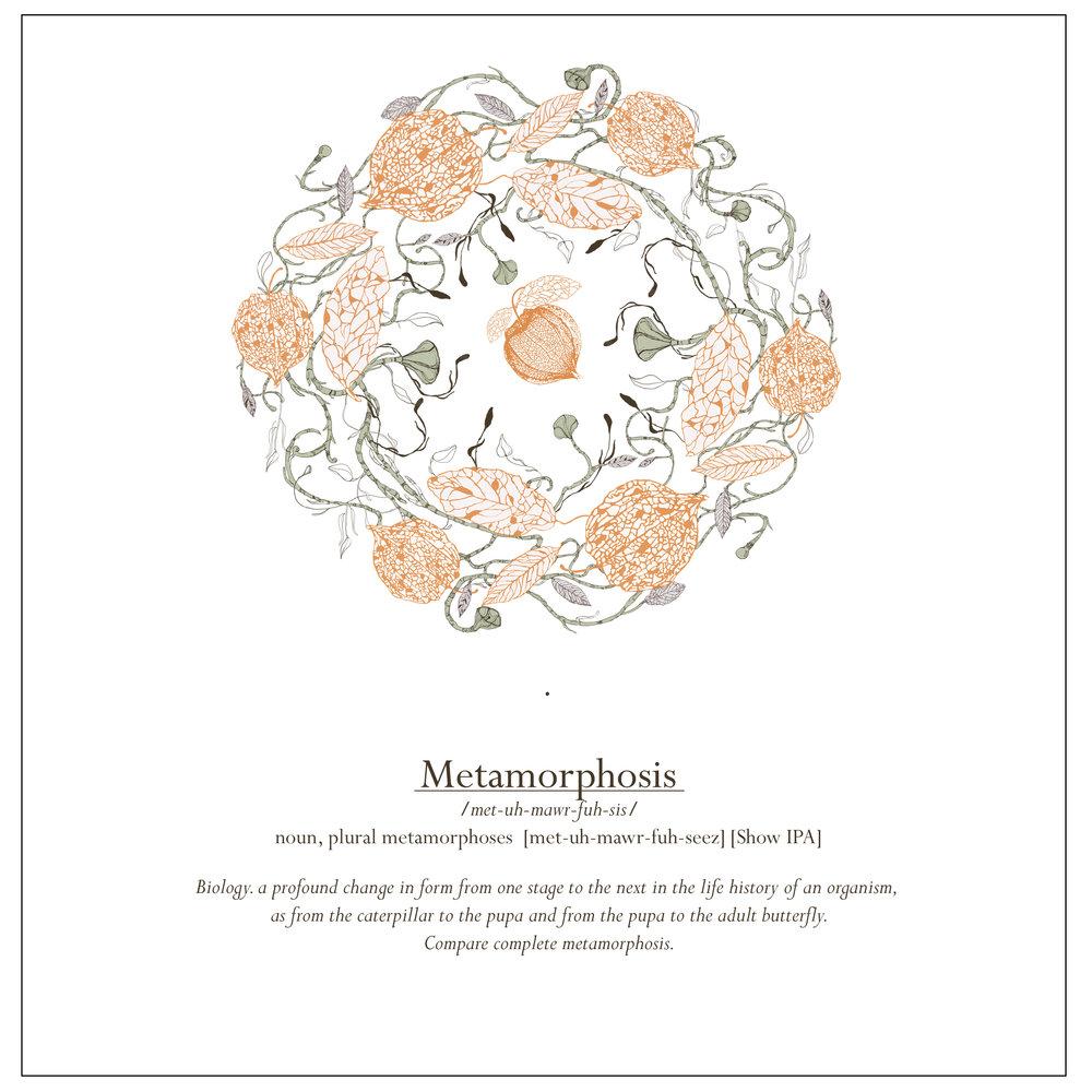 Bre_Metamorphosis_1.jpg