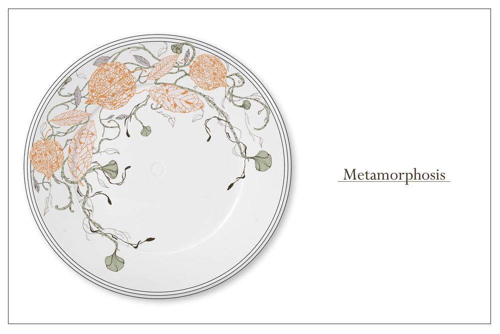 Bre_Metamorphosis_3.jpg