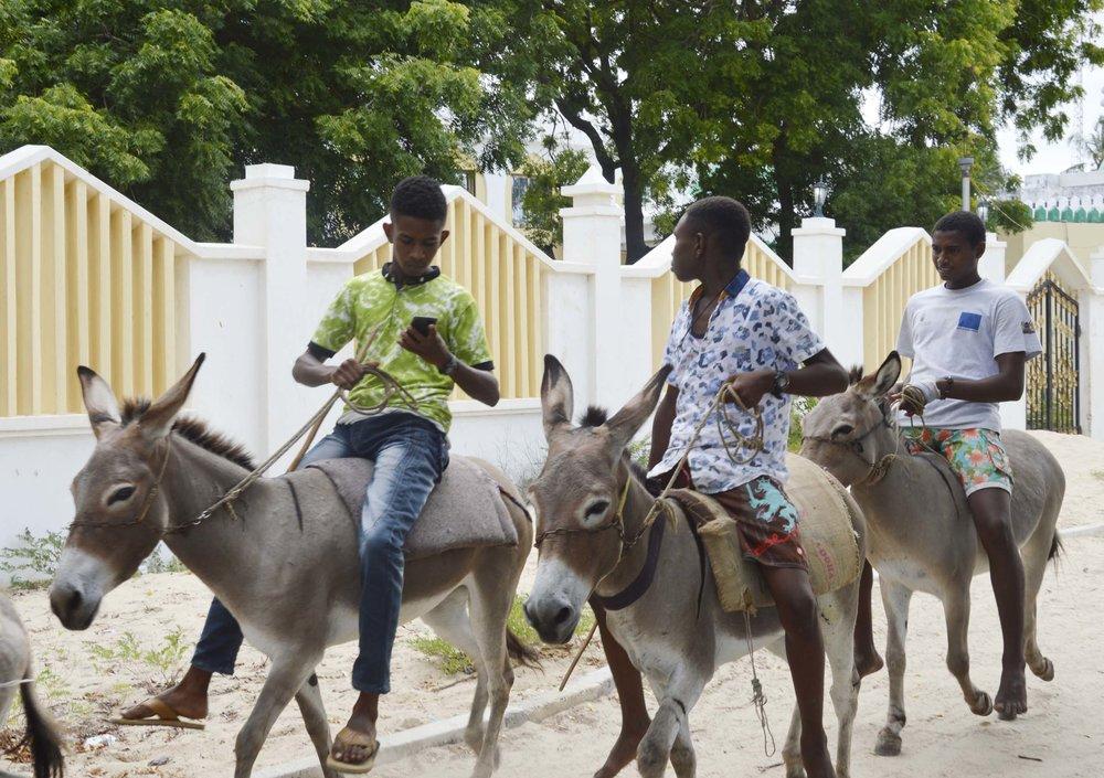 Lamu-Kenya-02-citymladyp.jpg