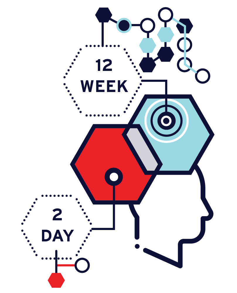 A7540-CORE-Skills-Data-Science-Infographics-HexagonChart.png
