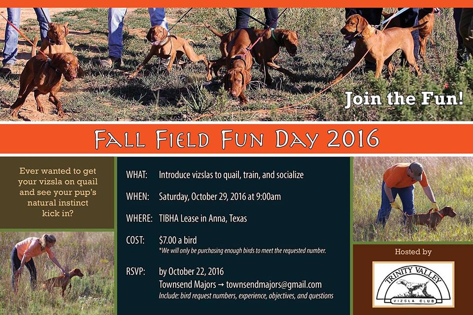Fall Field Fun Day 2016 Credit: Townsend Majors