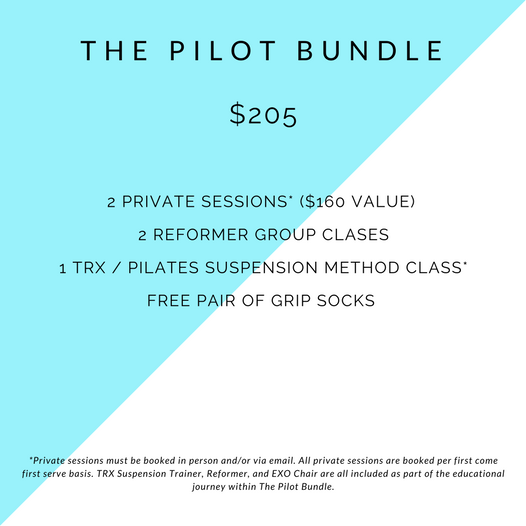the pilot bundle_web image.png