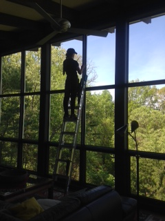 Sky Clean | Window cleaner on a ladder