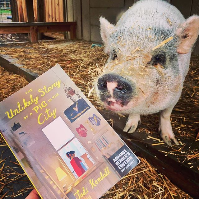 "Pigs and humans alike are excited for @jodi_kendall 's debut middle grade novel THE UNLIKELY STORY OF A PIG IN THE CITY. @sljournal called it ""a charming tale ideal for fans of Jeanne Birdsall's The Penderwicks""! (📸 cred: @jodi_kendall)"