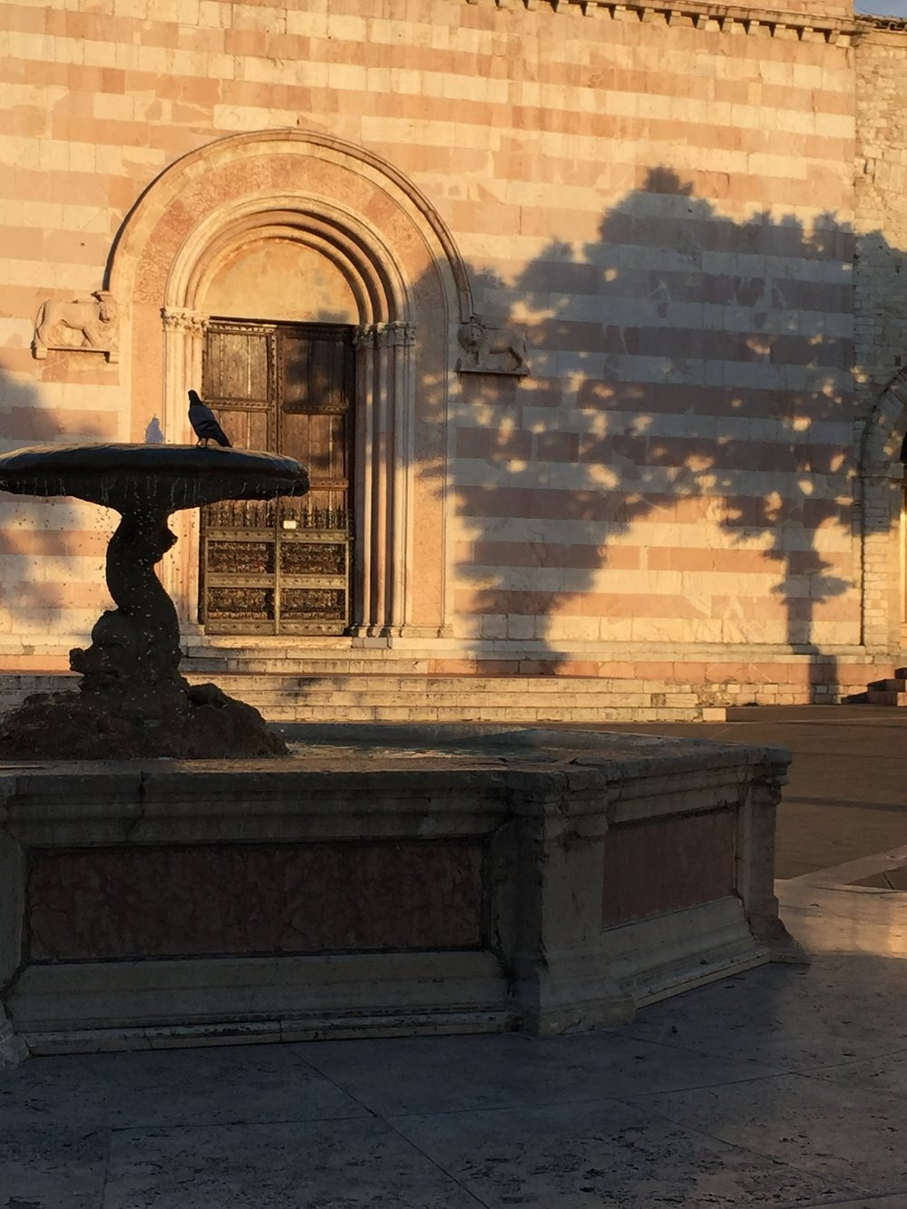 Diane Green Fountain in Assisi June 2018.JPG