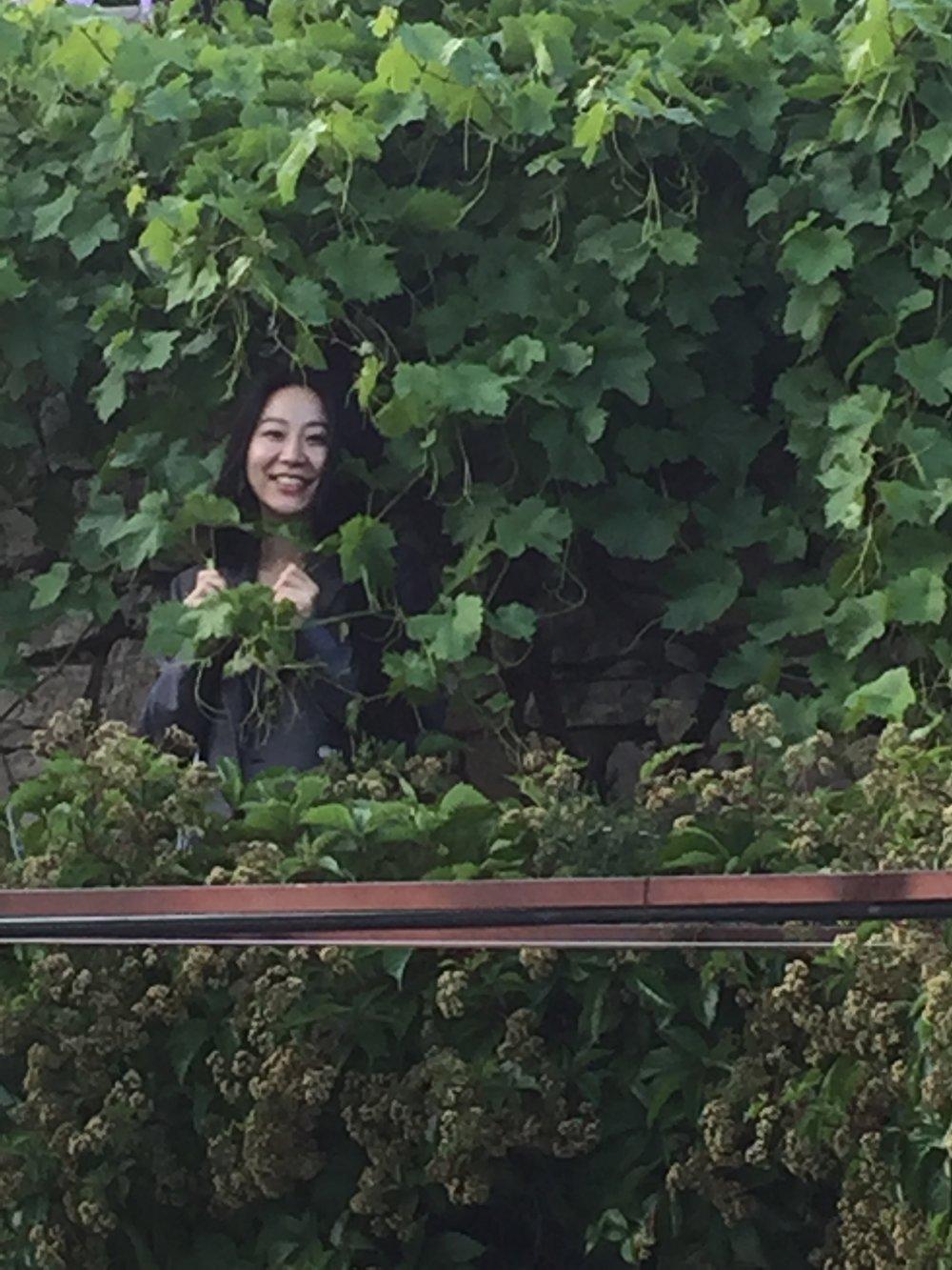 Diane Green_Minciotti Garden June 2018.JPG