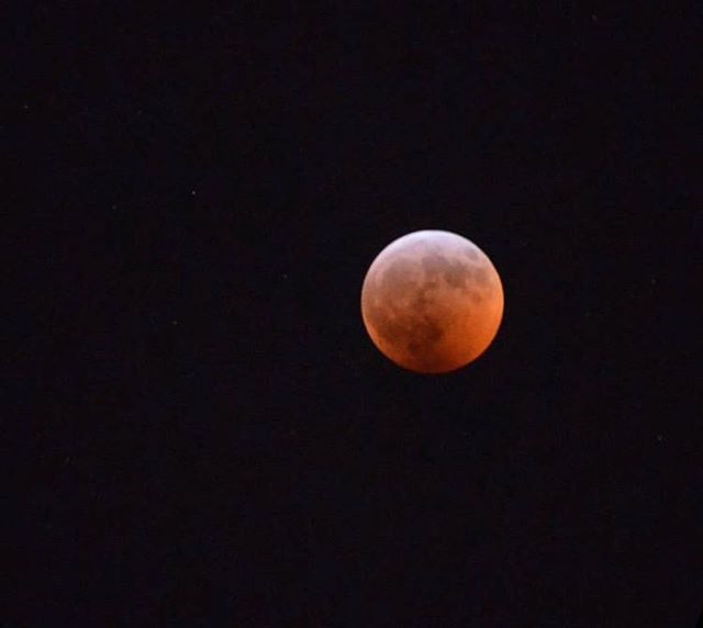 Super Blood Wolf Moon lunar eclipse snapped by our Toronto mama @kathytay134 🌝♥️