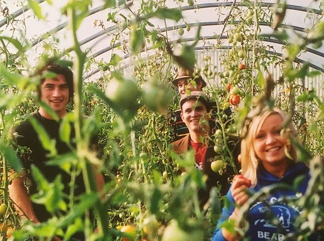 From the archives...🌱🍅one of our very first band photo shoots with old drummer/forever friend @bennyschuetze at UBC farm (pretty sure Benny had the camera on a timer propped up on a ladder in the greenhouse and he was trying to run in to a gap between the vines -hence why Vertesi's face is blocked 😂🙃) #babyband #tomatotomato #whenbennywasintheband