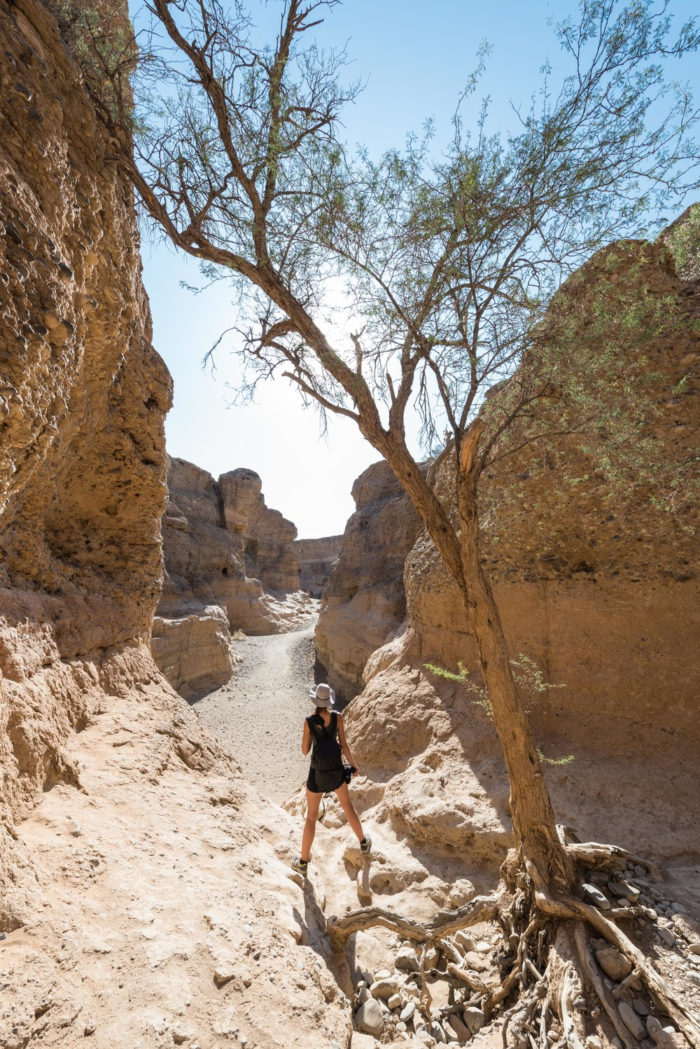 The view entering the lower part of the canyon.