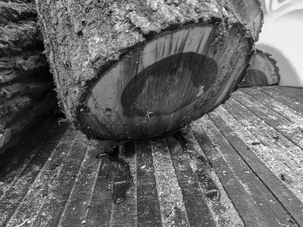 wooddrip-1.jpg