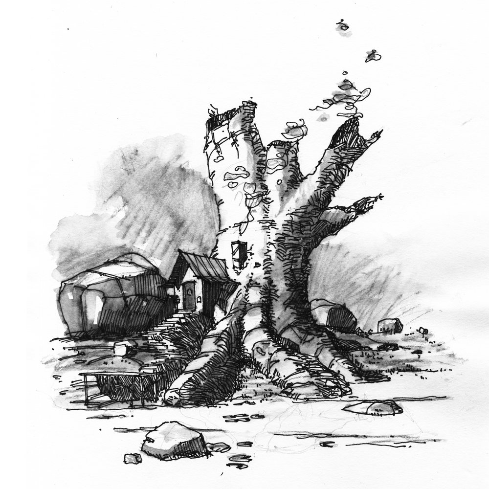 treeh.jpg