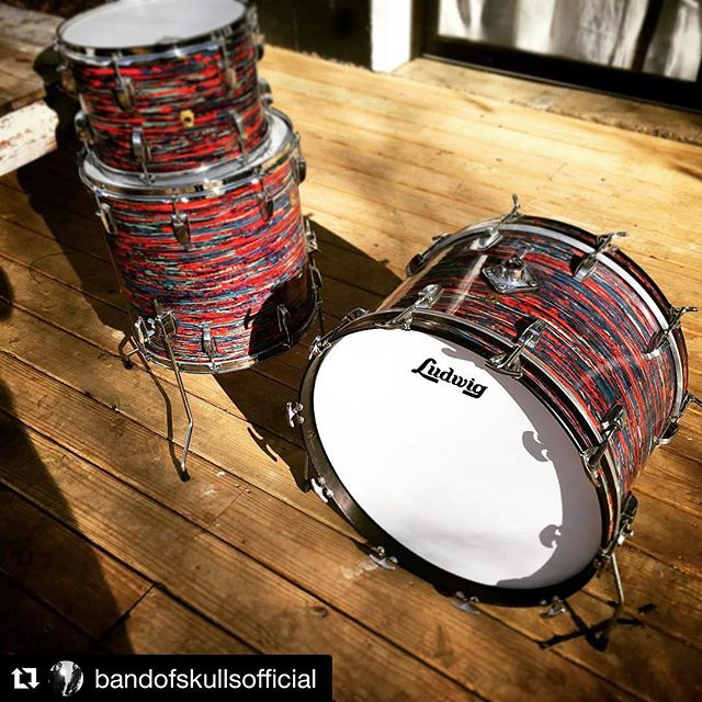 "Our newest kit! 1968 Ludwig Psychedelic Red in 13, 16, 22"". I'm currently obsessed with this kit but I promise to rent it. Hit us up... rentals@doriovintagedrums.com.  #Repost @bandofskullsofficial ・・・ @coolranchdorio the psychedelic red Ludwig! One of many awesome kits at @doriovintagedrums check them out. #bandofskulls #southampton #nashville #vintage #drums #ludwig #psychedelic"