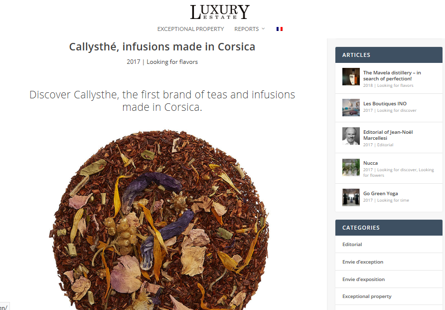 Luxury Estate Website (english version)