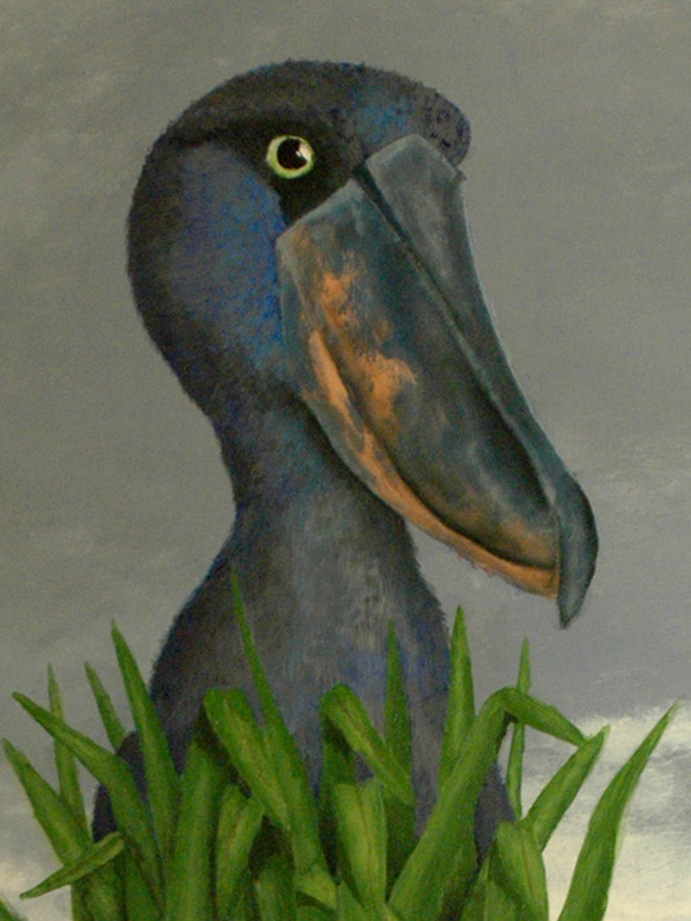 Carolyn_Byers_Shoebill_detail_DO_NOT_USE_WITHOUT_PERMISSION.jpg