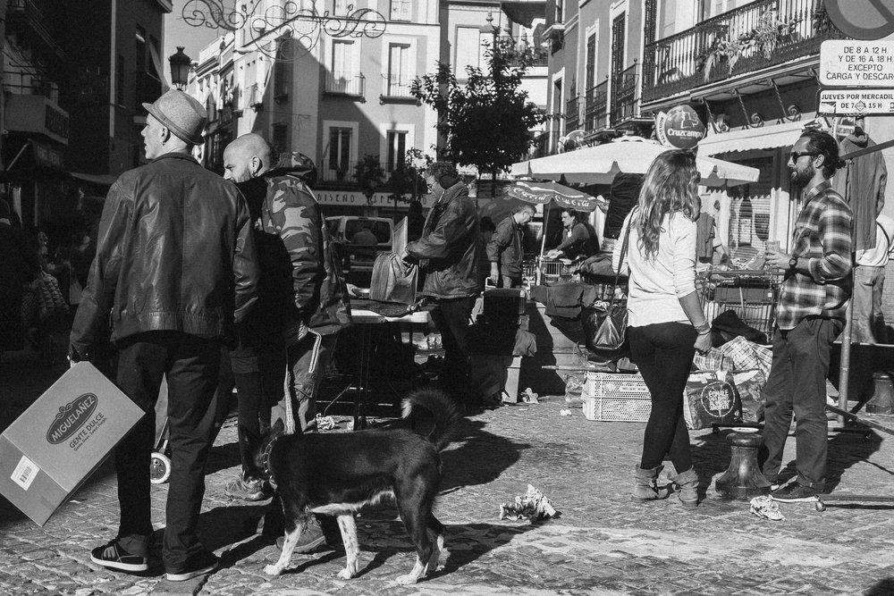 Feria de Sevilla | Jorge Güiro 34.jpg