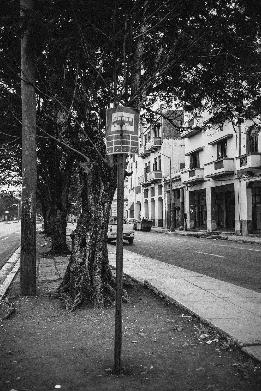 P-Bus de Cuba by Jorge Güiro 19.jpg