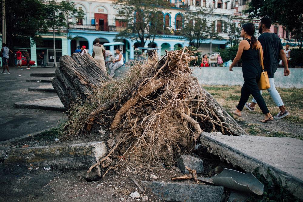 Havana 2018- Jorge Güiro 17.jpg