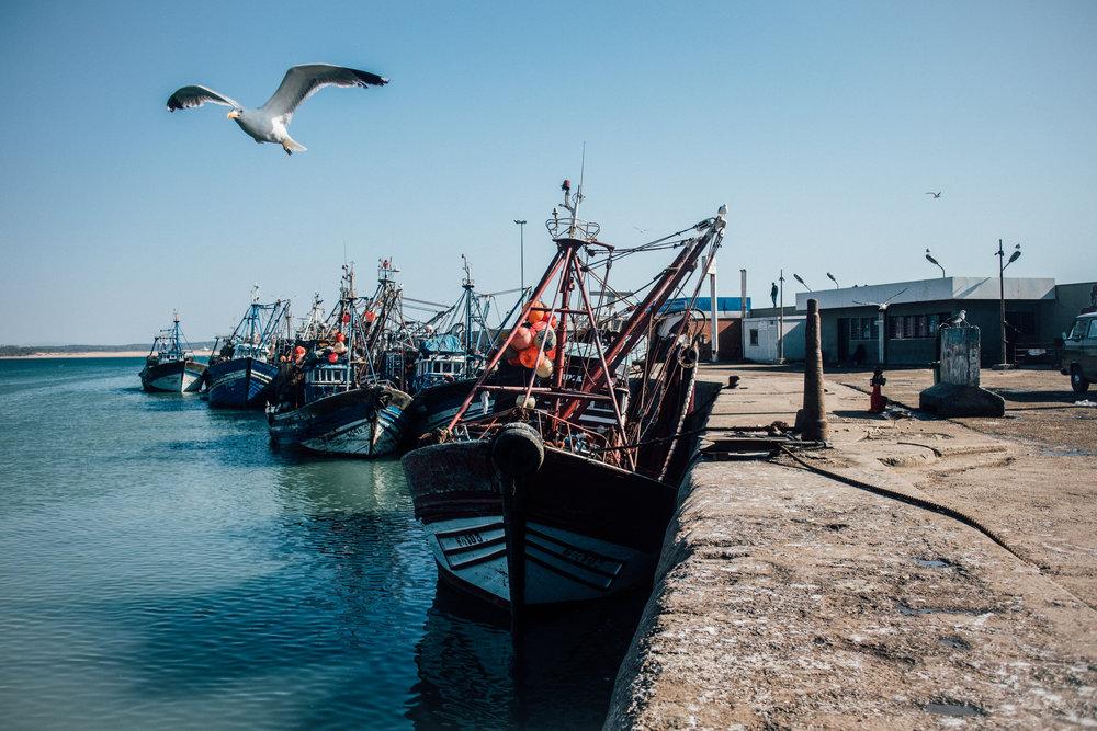 Essaouira by Jorge Güiro 96.jpg