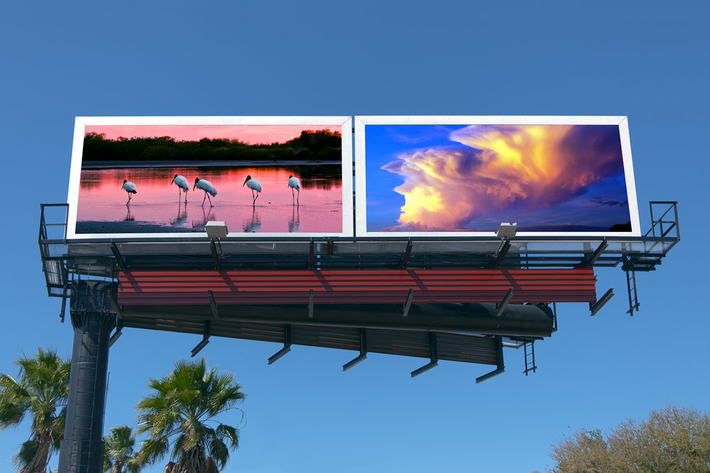 Casler_530303_4-6_Billboard-2.jpg
