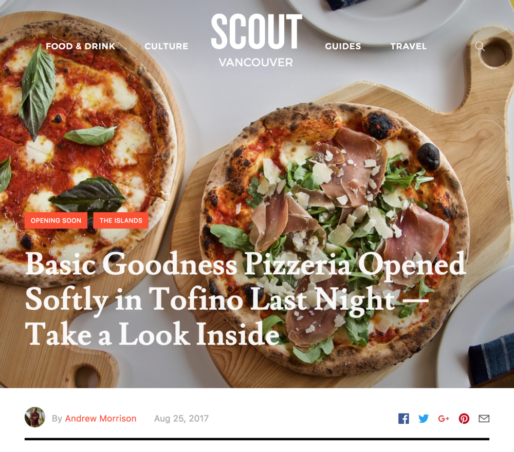 BasicGoodness-Scout-Article.png