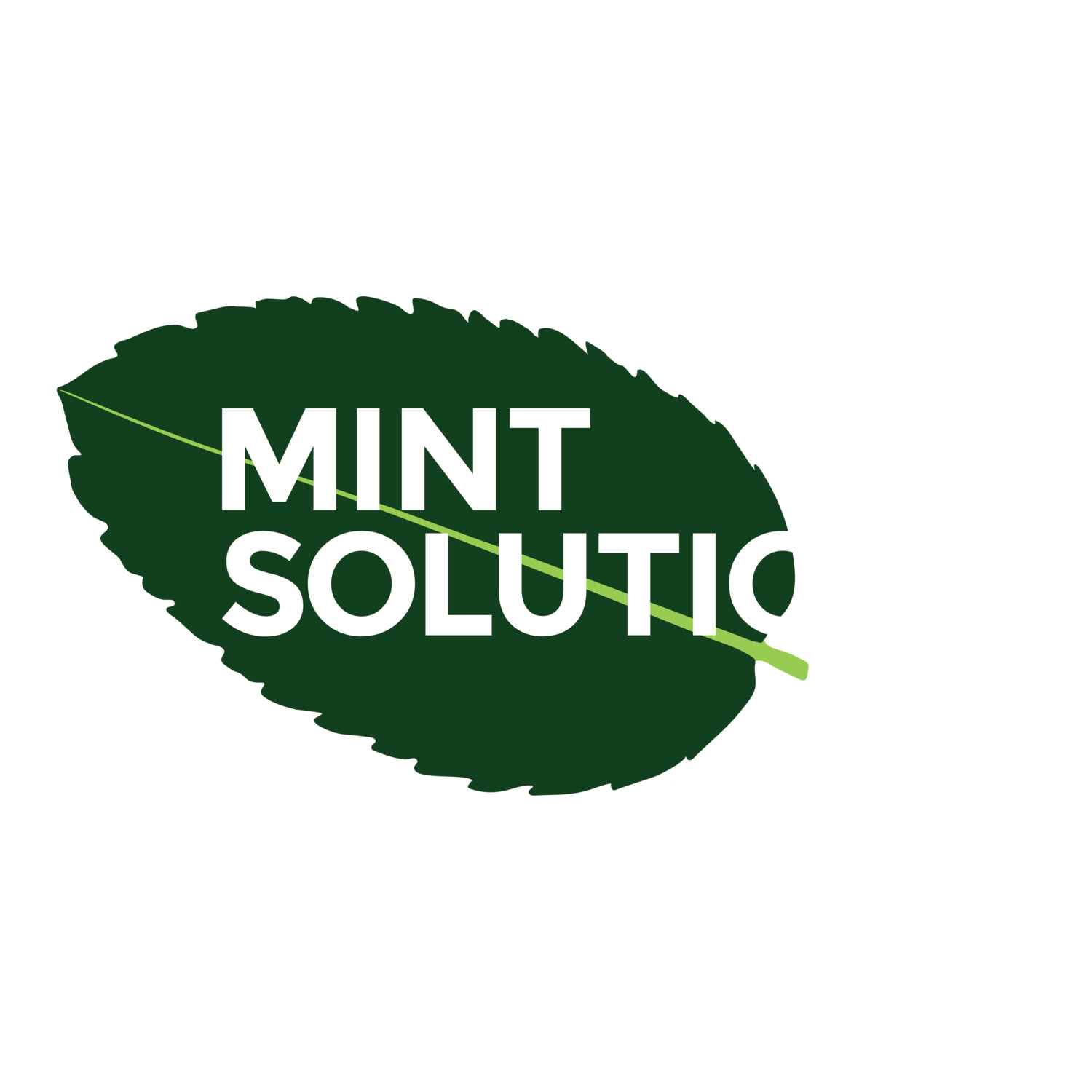 Mint Solutions Ltd