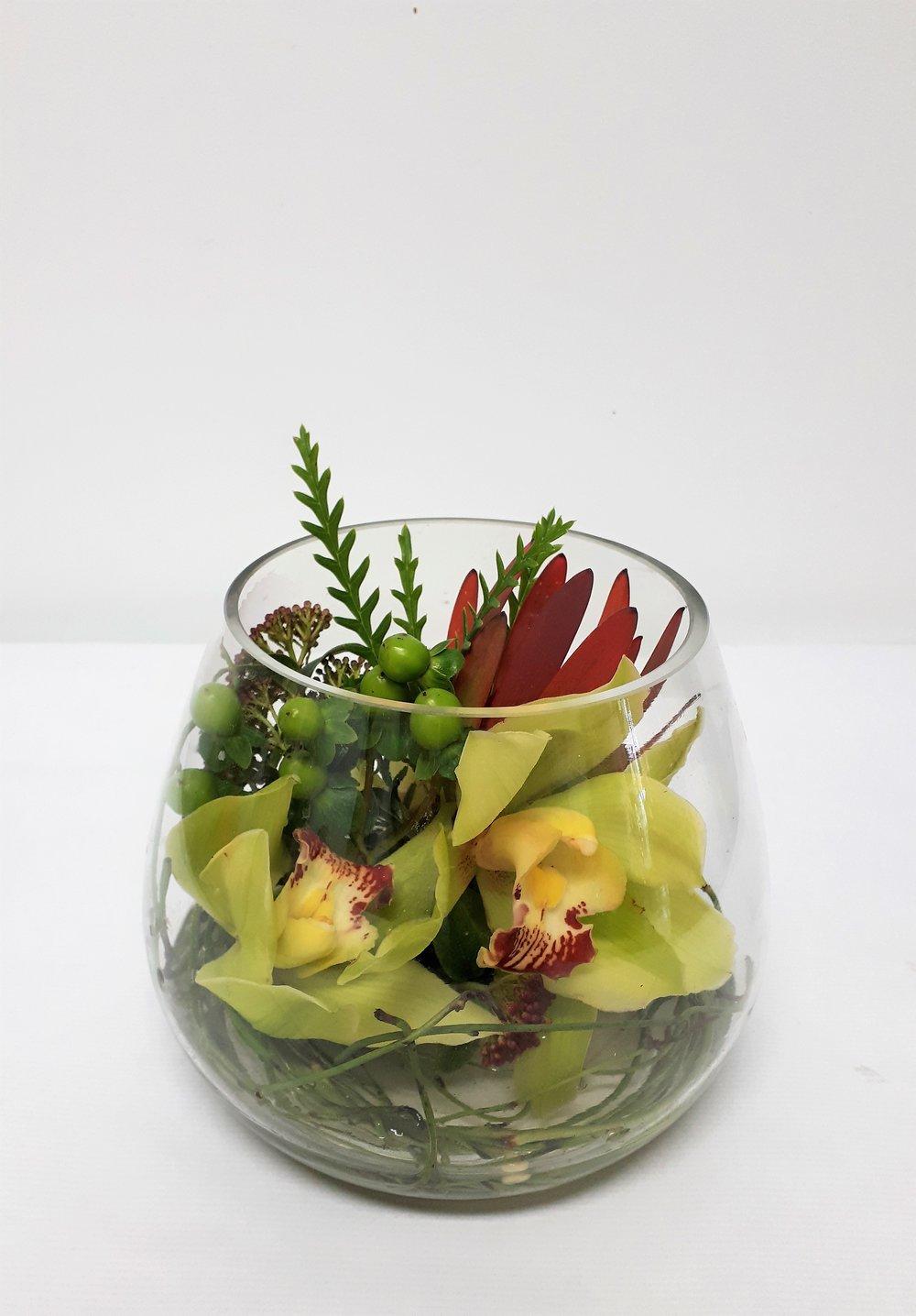 Orchid bowl green standard.jpg
