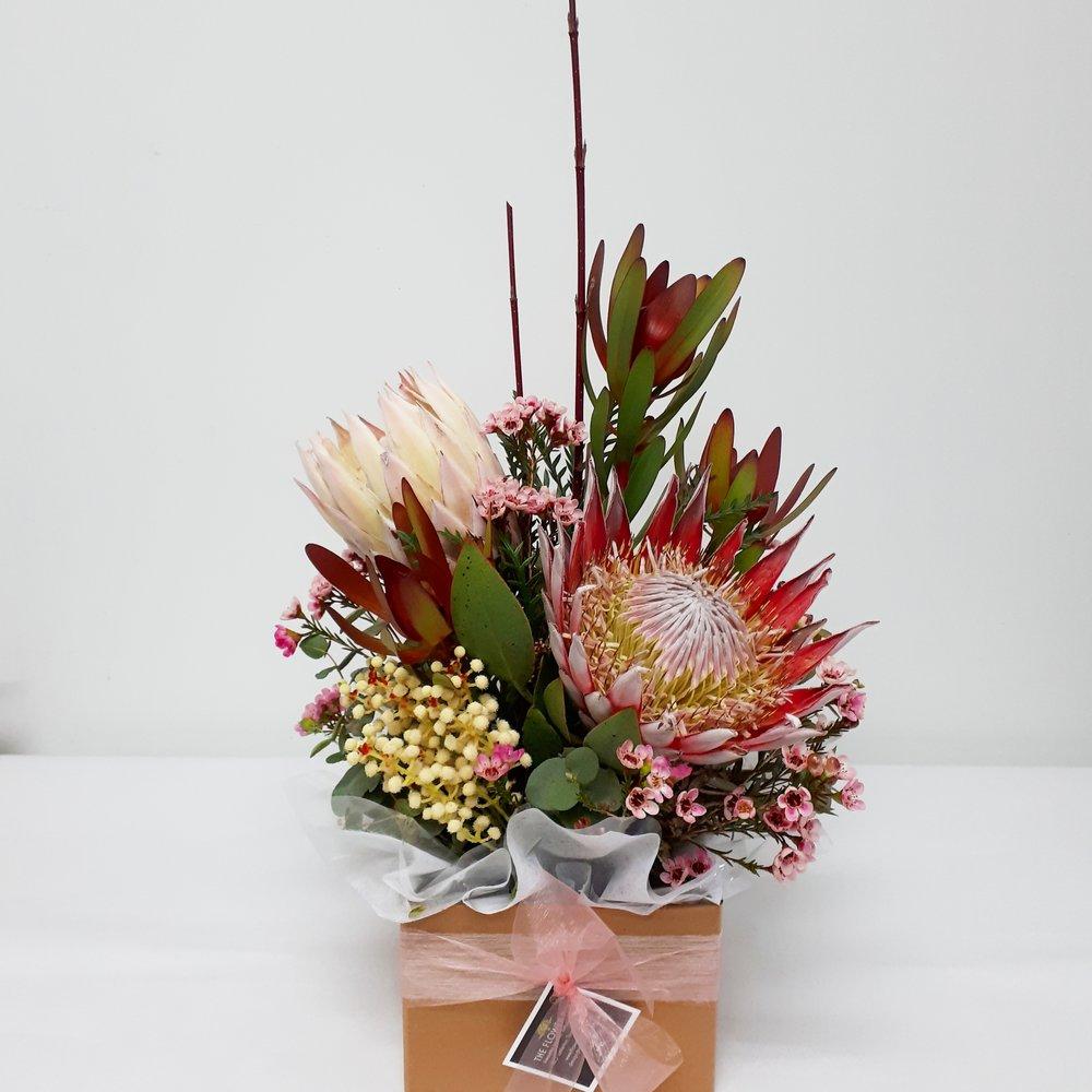 Box Protea.jpg