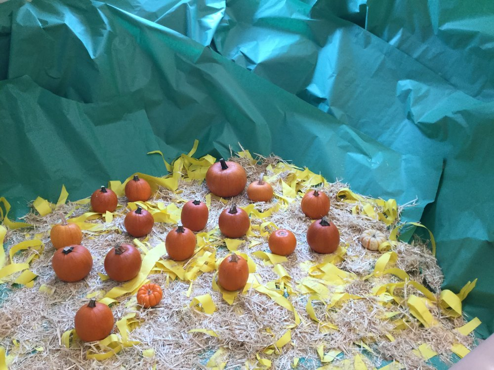 Thank You Brian Tees for the wonderful looking Pumpkin patch!!