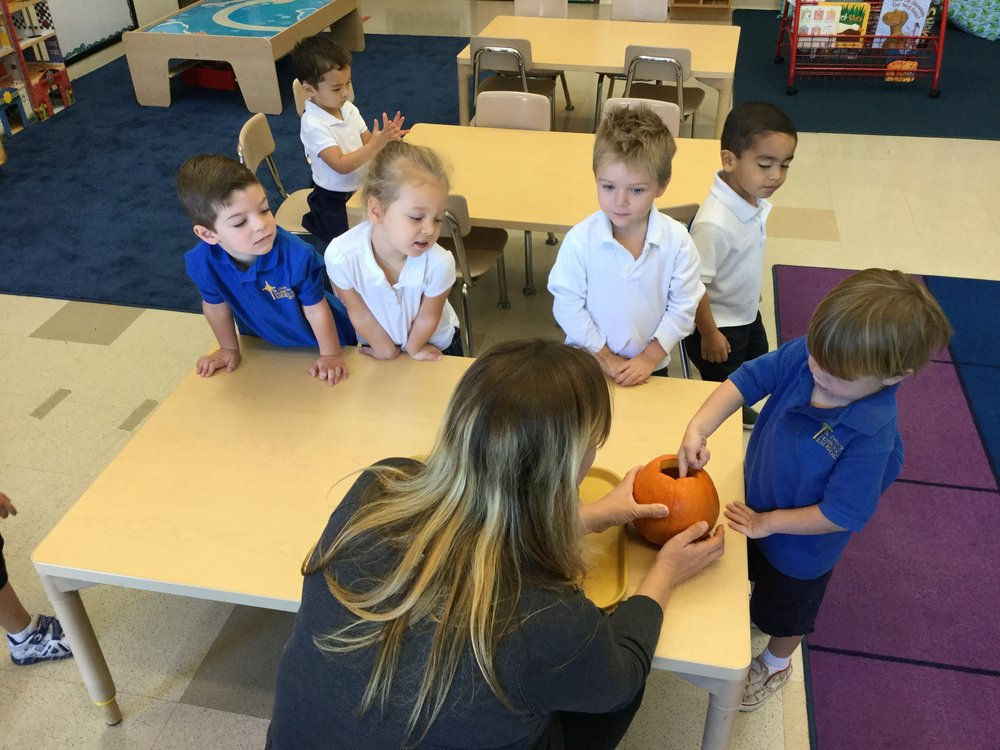 What does the inside of a pumpkin feel like?