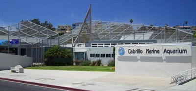 The Cabrillo Marine Aquarium! - An On-Site Field Trip sponsored by PAB