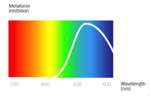 Figure 1: Image Source - Berk Ilhan, 10XBeta