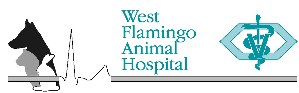 West Flamingo Animal Hospital was established in the 1980's and has been serving the Las Vegas Valley with premier veterinary services since then.They are AAHA accredited.They are open 7 days a week and have extended hours Mon - Fri. In addition to all traditional veterinary services they also provide special services including: boarding and grooming, acupuncture, dental care, senior wellness, cancer care, surgical specialists, advanced diagnostics including ultrasounds, endoscopy, blood pressure monitoring, digital radiography, in house laboratory equipment.They have six full time doctors and a support staff of over 30 people to serve all your needs.They believe in wellness and preventive care to ensure you have many happy years with your best friend.