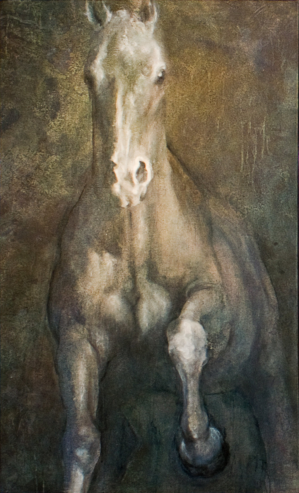 Sacred Creatures Shery rohl horse3.jpg