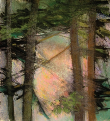 "Woods X  (sold) pastel on watercolor paper, 18"" x 16"" 2008"
