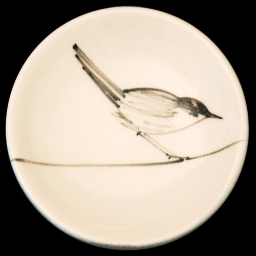 tiny plate bird.jpg
