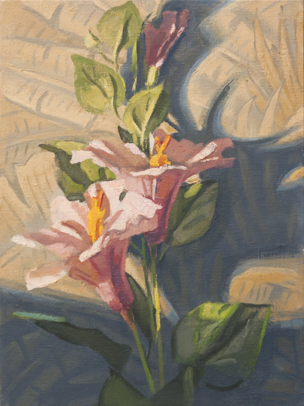 Hibiscus and Shadow  oil on linen, 2018 12x9""