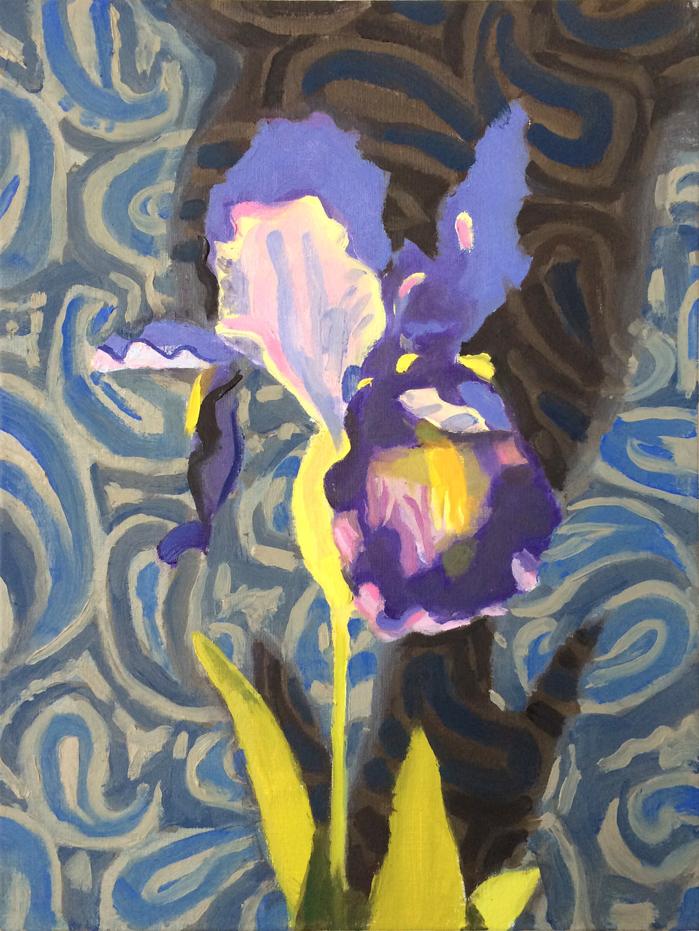 Iris and Shadow  oil on linen, 2017 12x9""
