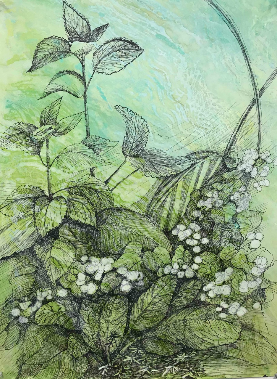 """My Florida Garden, 35x28"""" encaustic monotypes and ink drawings"""